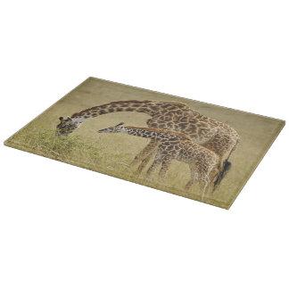 Mother and baby Masai Giraffe, Giraffa Cutting Board