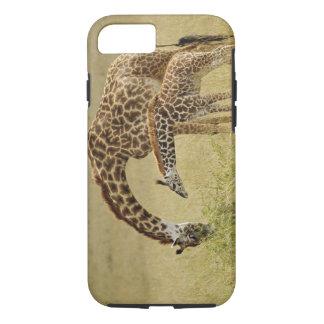 Mother and baby Masai Giraffe, Giraffa iPhone 8/7 Case