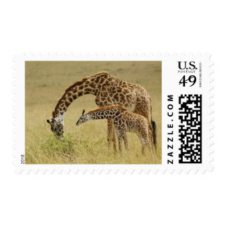 Mother and baby Masai Giraffe Giraffa Postage Stamps