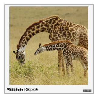 Mother and baby Masai Giraffe, Giraffa Wall Decal