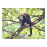 """Mother and Baby Monkey 5"""" X 7"""" Invitation Card"""