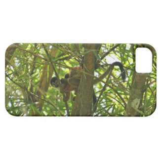 Mother and Baby Monkey iPhone 5 Cases
