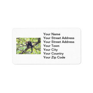 Mother and Baby Monkey Custom Address Labels