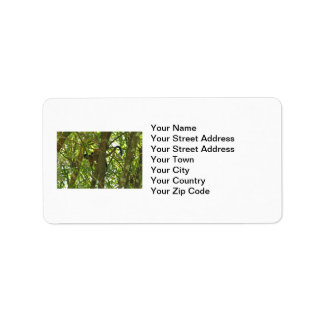 Mother and Baby Monkey Address Label