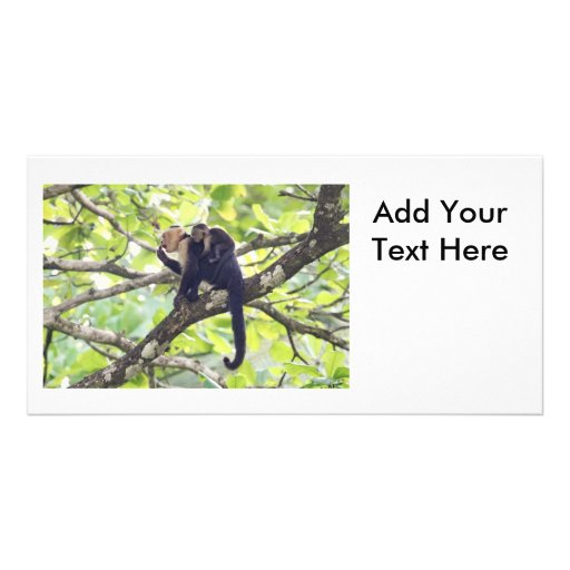 Mother and Baby Monkey Customized Photo Card