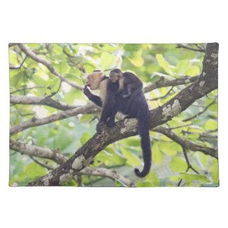 Mother and Baby Monkey Place Mat