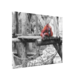 Mother and Baby Orangutan Stretched Canvas Print