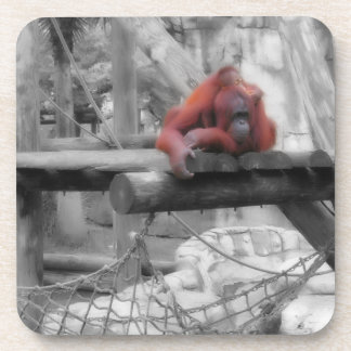 Mother and Baby Orangutan Coasters