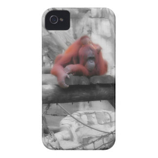 Mother and Baby Orangutan iPhone 4 Case-Mate Case