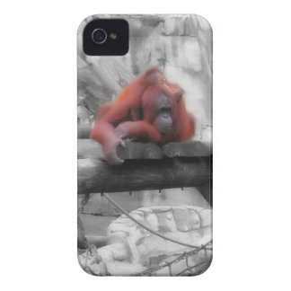 Mother and Baby Orangutan iPhone 4 Cover