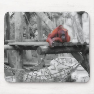 Mother and Baby Orangutan Mouse Pad