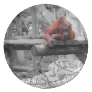 Mother and Baby Orangutan Plates