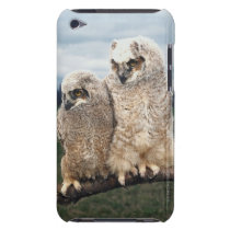 Mother and Baby Owl iPod Touch Case