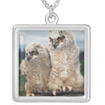 Mother and Baby Owl Silver Plated Necklace