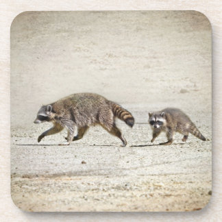 Mother and Baby Raccoon Coasters