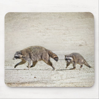 Mother and Baby Raccoon Mouse Pad