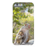 Mother and baby Rhesus Macaque monkeys on wall Barely There iPhone 6 Case