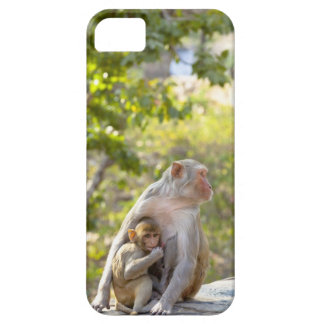 Mother and baby Rhesus Macaque monkeys on wall iPhone SE/5/5s Case
