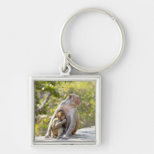 Mother and baby Rhesus Macaque monkeys on wall Keychain