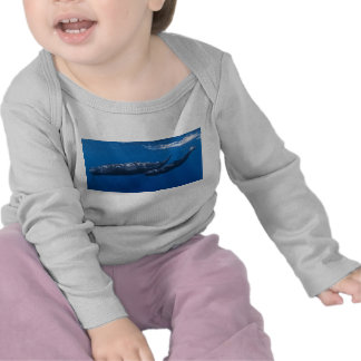 Mother and Baby Sperm Whale Physeter macrocephalus Shirts