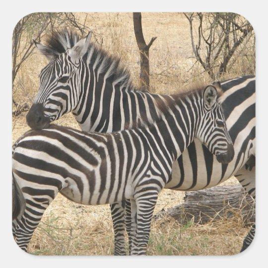 Mother and Baby Zebra  Sticker