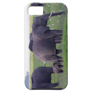 Mother and Calf Elephant Case Mate