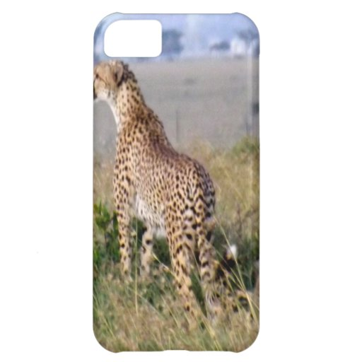 MOTHER AND CHILD iPhone 5C COVERS