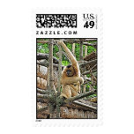 Mother and Child Gibbons Painting Postage Stamp