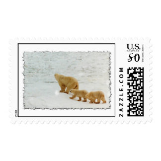 Mother and cubs postage