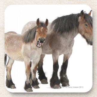 Mother and foal smiling, Belgian horse, Belgian Drink Coaster