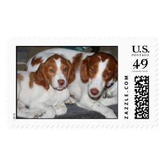 Mother and Son Brittanys Stamps