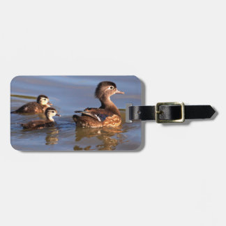 Mother and Wood Ducklings Bag Tag