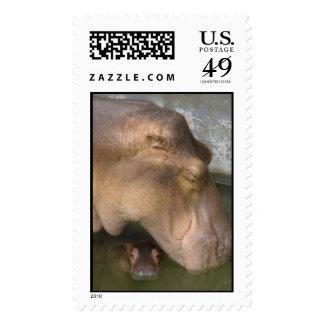 mother&baby hippopotamus stamps