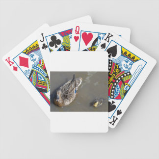 Mother & Baby Mallard Duck Bicycle Playing Cards