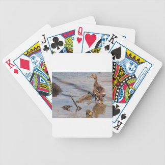 Mother & Baby Mallard on the River Bicycle Playing Cards