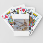 Mother & Baby Mallard on the River Card Deck