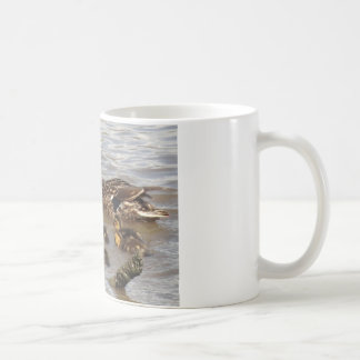 Mother & Baby Mallards on the River Coffee Mug