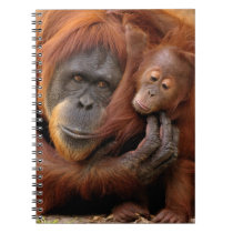 Mother & Baby Orangutan Notebook