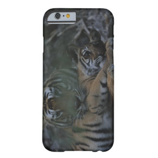 Mother Bengal Tiger with Cub Barely There iPhone 6 Case