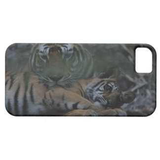 Mother Bengal Tiger with Cub iPhone SE/5/5s Case