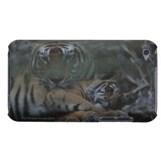 Mother Bengal Tiger with Cub iPod Touch Cover