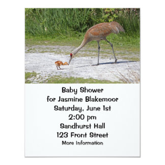 Mother Bird and Baby Bird Sandhill Cranes Card
