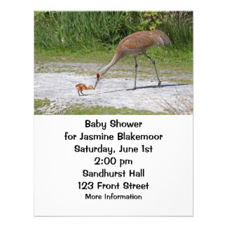 Mother Bird and Baby Bird Sandhill Cranes Invite