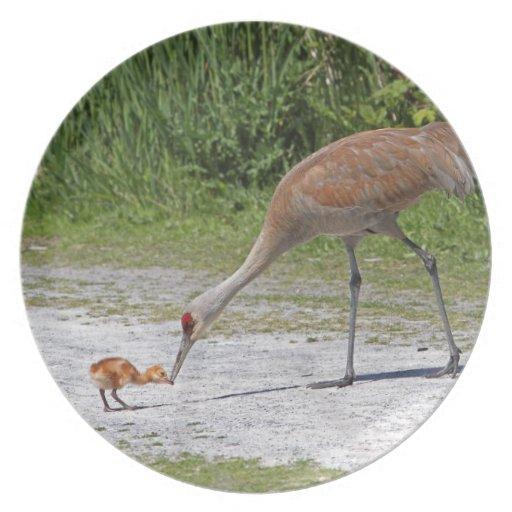 Mother Bird and Baby Bird Sandhill Cranes Dinner Plates