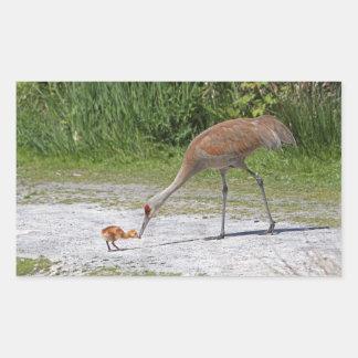 Mother Bird and Baby Bird Sandhill Cranes Rectangular Sticker