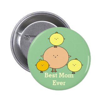Mother Bird with Three Kids Pinback Button