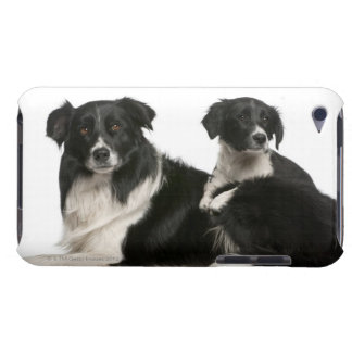 Mother border collie and puppy barely there iPod case