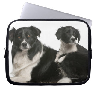 Mother border collie and puppy computer sleeve