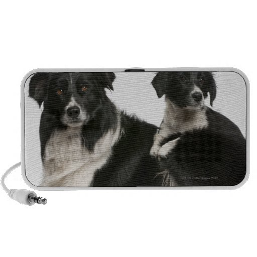 Mother border collie and puppy iPod speakers