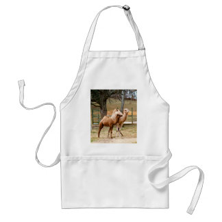 Mother Camel and Baby Animal Photo Desert Animal Adult Apron